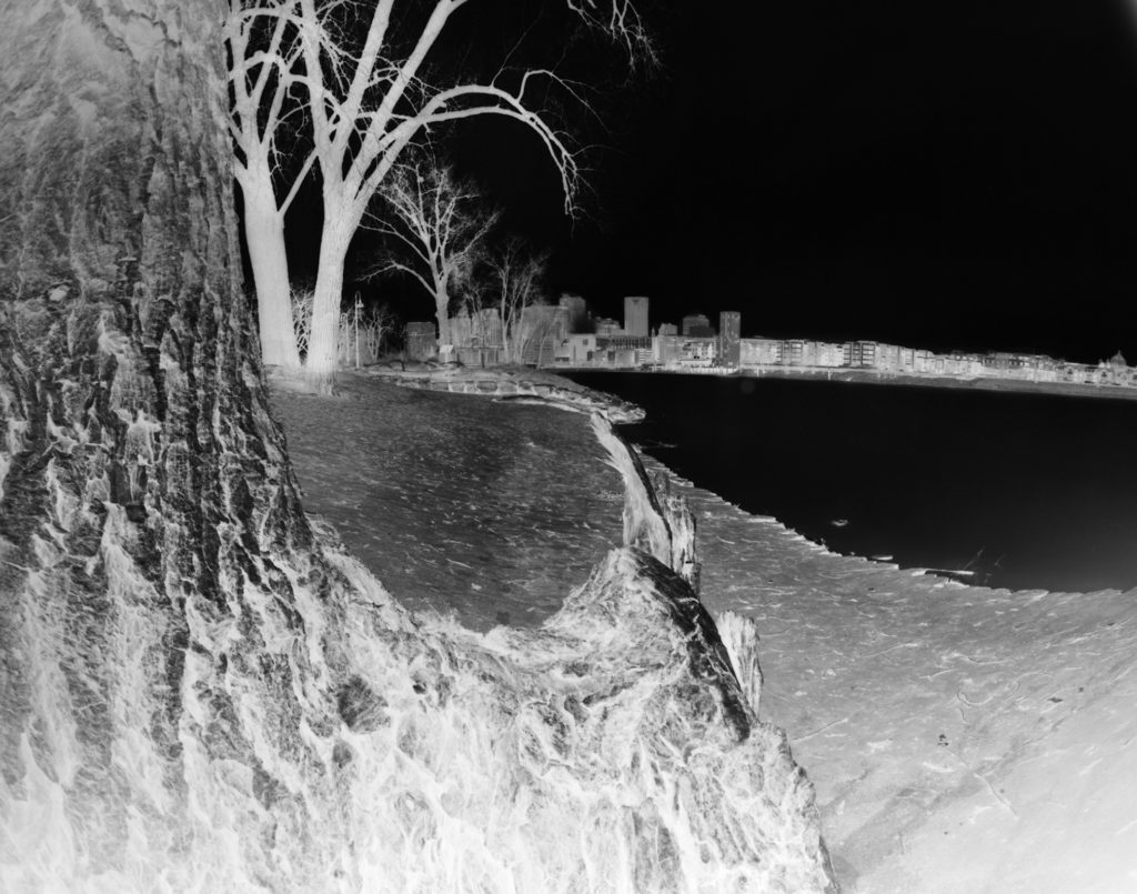 Scene through a C of Trees: A photograph of downtown Saint Paul framed by trees on Harriet Island.
